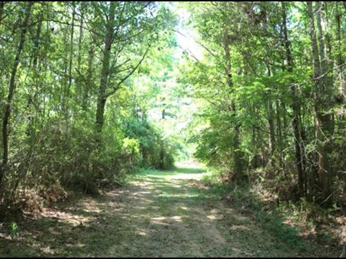 10 Acres In Attala County In Kosciu : Kosciusko : Attala County : Mississippi