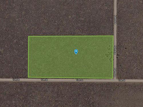 5.8 Acres For Sale In Alamosa, Co : Blanca : Alamosa County : Colorado