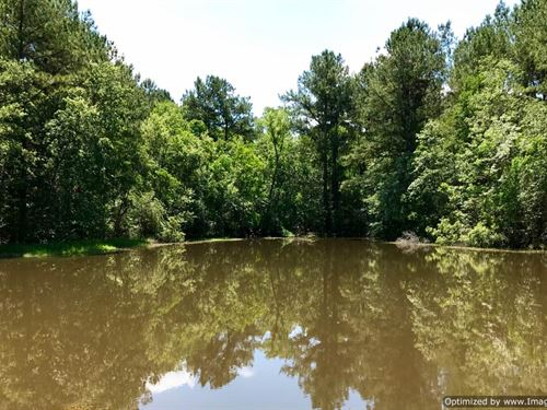 Beautiful Homesite With Pond : Perkinston : Stone County : Mississippi
