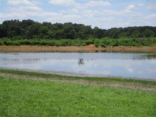 Missouri Hobby Farm, Great Hunting : Mountain View : Howell County : Missouri