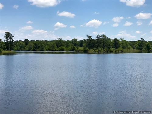 Beautiful Property On Rogers Lake : Perkinston : Stone County : Mississippi