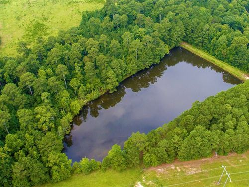 29.9 Acres, Pond, Pasture & Timber : Woodville : Greene County : Georgia