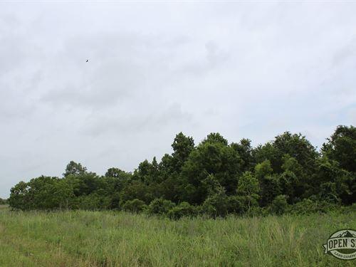 Your Future Looks Bright : Village Mills : Hardin County : Texas
