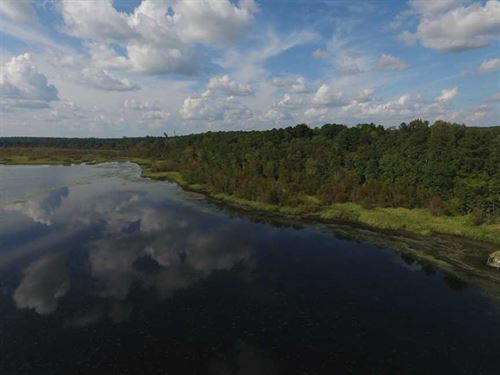 Reduced, 5.07 Acres of Waterfront : Gaston : Northampton County : North Carolina