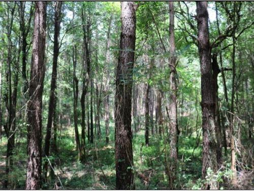 115 Acres In Neshoba County In Phil : Philadelphia : Neshoba County : Mississippi