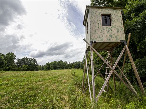 Tr 289, 80 Acres : Glouster : Perry County : Ohio