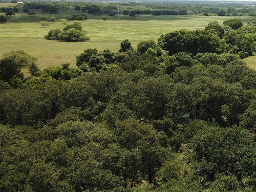 1 Acre Of Land In Tx With Trees : Luling : Caldwell County : Texas