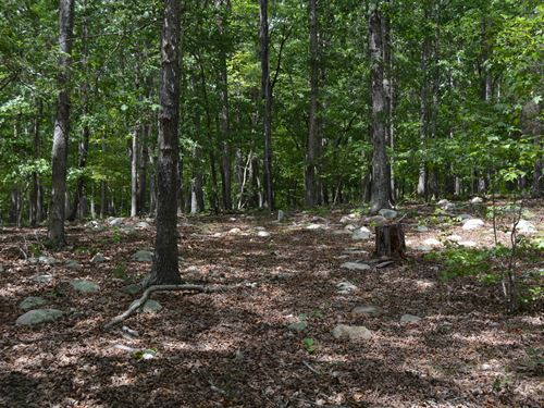 Ideal Land For Small Subdivision : Chapel Hill : Chatham County : North Carolina