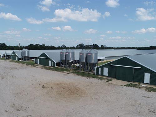 12 House Broiler Farm : Naples : Morris County : Texas