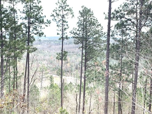 200 Acres On Beaver Dam Creek : Bethlehem : Perry County : Alabama