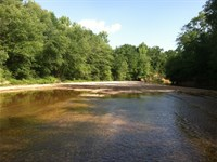 14-004 Mullberry Creek Tract : Plantersville : Chilton County : Alabama