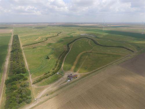 Dodge City Exotic Hunting Ranch : Minneola : Ford County : Kansas