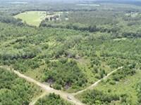 267 Acres Land For Sale Ware CO : Nicholls : Ware County : Georgia