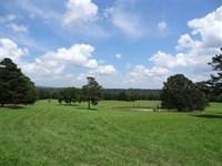 New Price, Bear Haven Ranch, 905 : Crabtree : Van Buren County : Arkansas