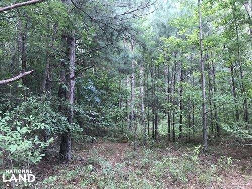 Evergreen Timber Investment And Hun : Fulton : Itawamba County : Mississippi