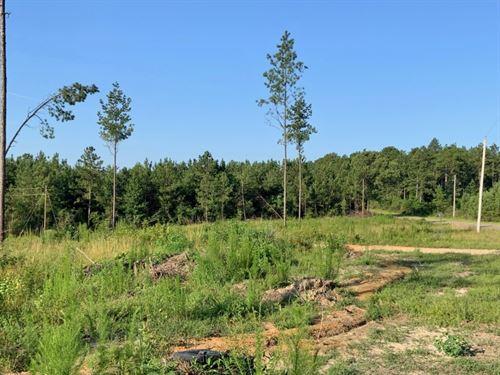 9.5 Acres Home Site Purvis School : Purvis : Lamar County : Mississippi