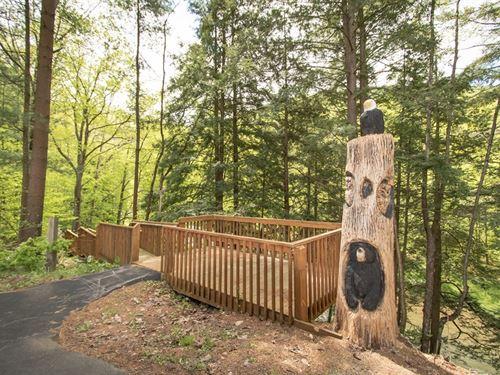 Sportsman's Dream 10+ Acres Pine : Galeton : Potter County : Pennsylvania