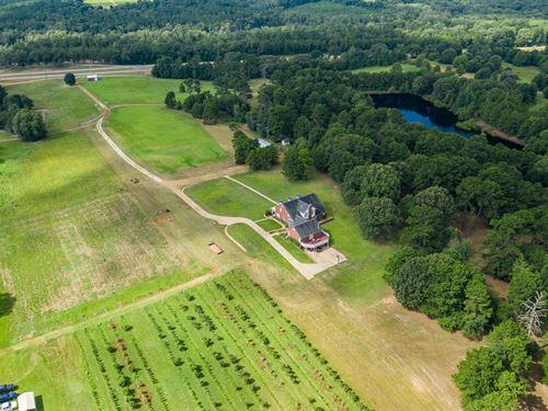 Income Producing Farm Recreational : Mineola : Wood County : Texas