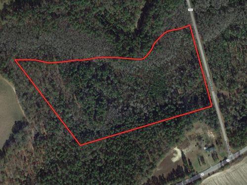 Secluded 18 Acre Home Site Bulloch : Statesboro : Bulloch County : Georgia
