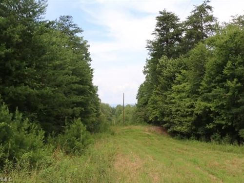 Drastically Reduced Build Site 14 : Westfield : Stokes County : North Carolina
