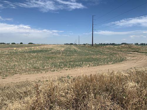 Severance Land And Views : Severance : Weld County : Colorado