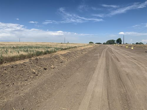 Severance Secluded Vacant Land : Severance : Weld County : Colorado