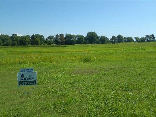 Farm Land Row Crop Ground 40 Acres : Biggers : Randolph County : Arkansas