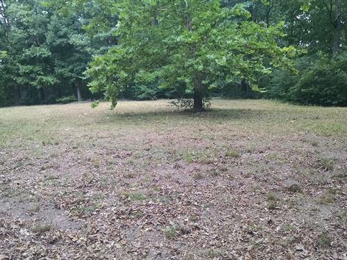 Large Wooded Acreage Madison Cnty : Huntsville : Madison County : Arkansas