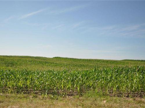 80 Ac Gentry County, MO Tiled : Darlington : Gentry County : Missouri
