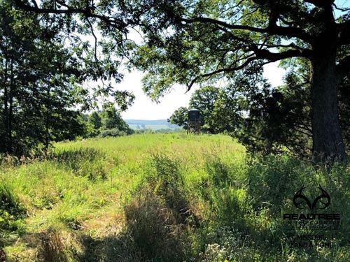 High-Quality Realtree UC Hunting : Worthington : Putnam County : Missouri