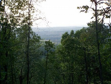 81+/- Acres Sleeping Giant Mt. : Talladega : Talladega County : Alabama