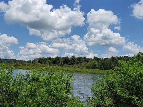 Gorgeous Lakefront Acreage : Brooksville : Hernando County : Florida