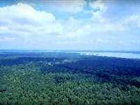 Hunter's Haven On Lake Livingston : Point Blank : San Jacinto County : Texas