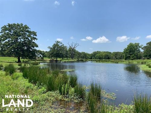62 Acres Rolling Terrain, Trees, LA : Grand Saline : Van Zandt County : Texas