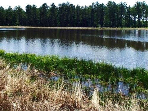 80 Acres In Lowndes County In Stark : Starkville : Lowndes County : Mississippi