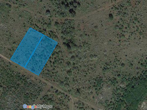 2 Acres For Sale In Sandia, Tx : Sandia : Live Oak County : Texas