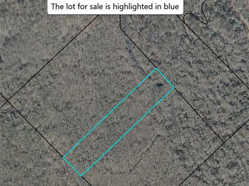 Land Is Worth $50K Selling For $16K : Macon : Bibb County : Georgia