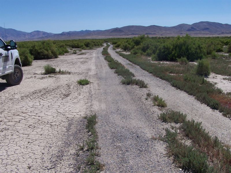 Near Humboldt River, $229 Per Month : Lovelock : Pershing County : Nevada