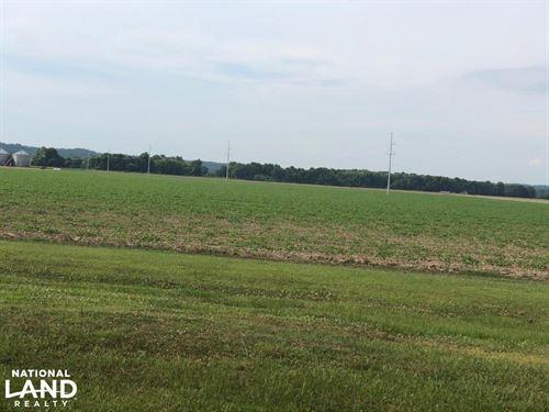 Greenway Plantation Row Crop Farm : Greenwood : Carroll County : Mississippi