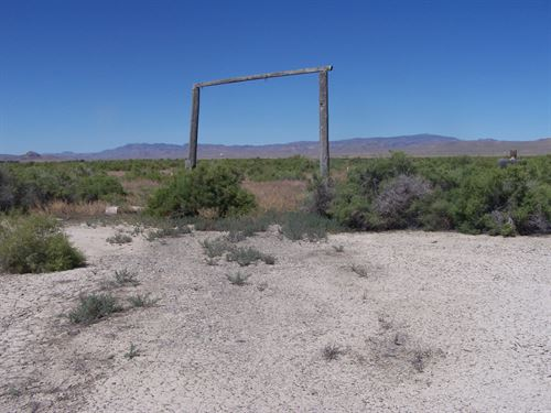 Nice Land Near Humboldt River : Lovelock : Pershing County : Nevada