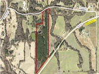 25.7 +/- Acres, Crp Pine Timber : Pope : Panola County : Mississippi