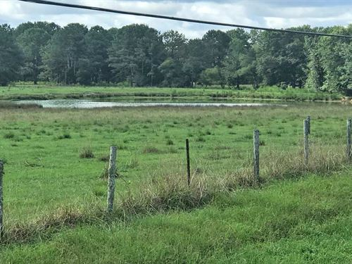 Lower Pond Property : Luverne : Crenshaw County : Alabama