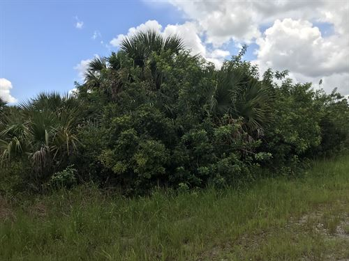 Amazing Lot For Sale : Palm Bay : Brevard County : Florida