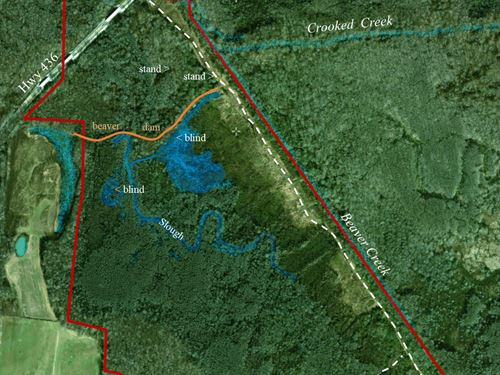 240 Acres, Duck, Deer, Turkey : Huntingdon : Carroll County : Tennessee
