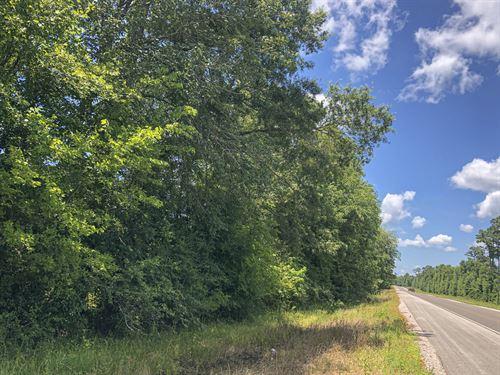 428 Ac Menard Creek West 311041 : Cleveland : Liberty County : Texas