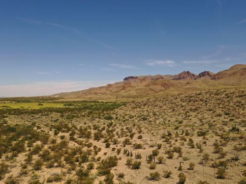 32 Acres, Good Mule Deer Area : Alpine : Brewster County : Texas