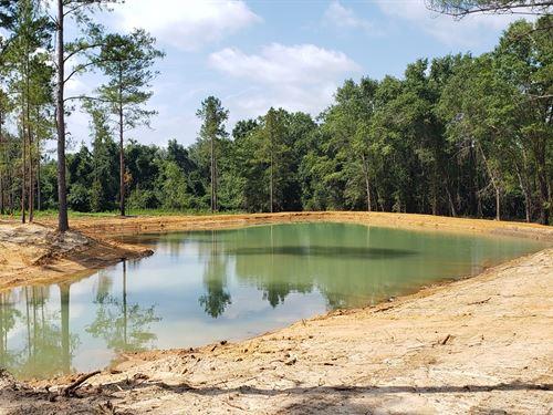 16 Acre Estate Size Lot Swainsboro : Swainsboro : Emanuel County : Georgia