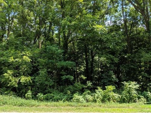 Wooded, Buildable 1.65 Acres Delton : Delton : Barry County : Michigan