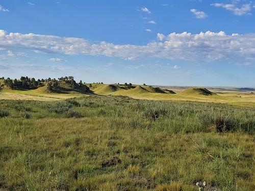 Open, Native Grassland : Fort Laramie : Goshen County : Wyoming