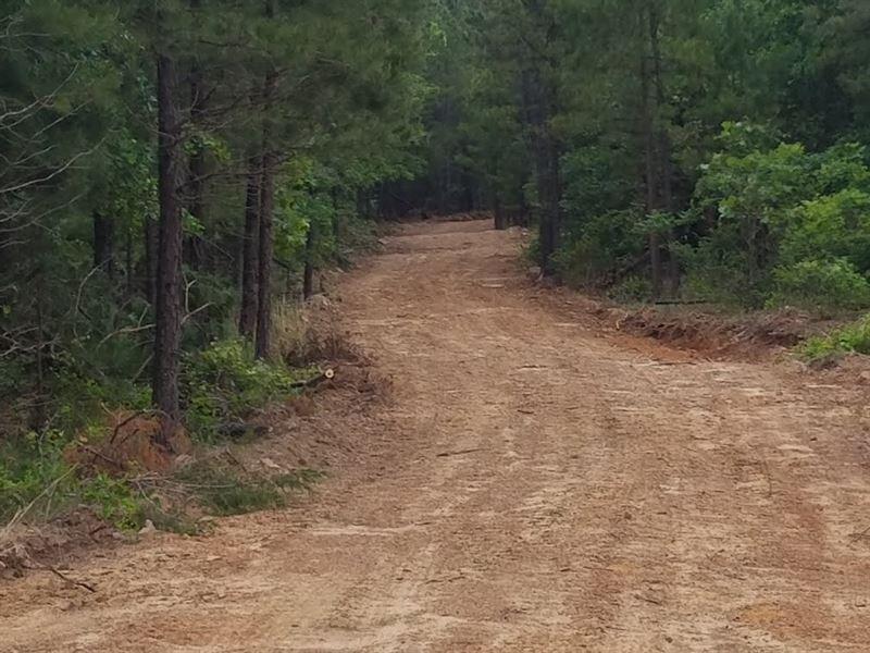 Acreage For Sale, Atoka County : Daisy : Atoka County : Oklahoma